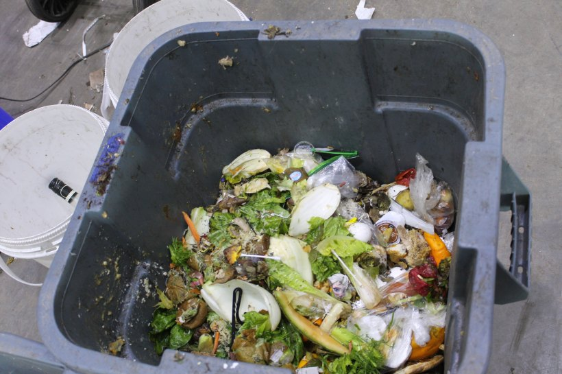 Unavoidable Food Waste